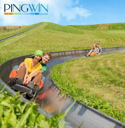 pingwin-416
