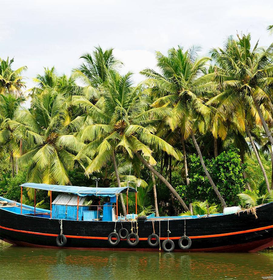 טיול מאורגן מושלם וייחודי לדרום הודו!