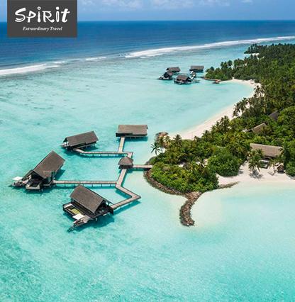 spirit_maldibim_15july_416x426